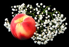 Peaches and flower Stock Photography