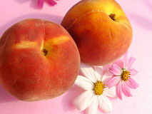 Peaches and flowers. Peaches seasoned whit flowers royalty free stock photography
