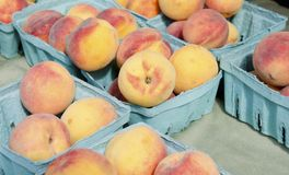 Peaches. Fresh picked field peaches for sale in paper baskets in the outdoor farm market Stock Photo