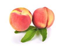 peaches fruit on white background. Royalty Free Stock Photos