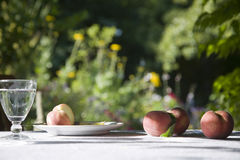Peaches On Garden Table Royalty Free Stock Image