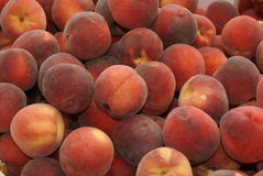 Peaches in a giant peach pile Royalty Free Stock Images