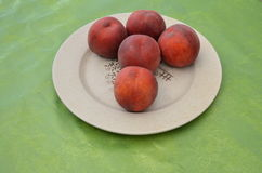 Peaches on a green background. Stock Photo