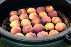 Peaches on the grill Stock Photos