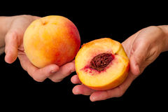 Peaches in hands on black Stock Photo