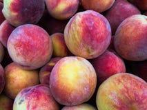 Peaches Heap orgânica fresca no mercado dos fazendeiros fotografia de stock