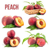 Peaches isolated. On white background Royalty Free Stock Photography