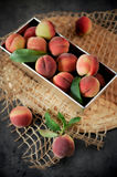 Peaches. Juicy and ripe peaches with green leaves. Dark background Stock Images