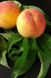 Peaches on leaves Royalty Free Stock Photo