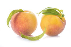 Peaches with leaves isolated on white background Royalty Free Stock Image