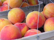 Peaches at Market Stock Photo