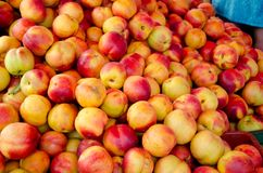 Peaches on the market Stock Image