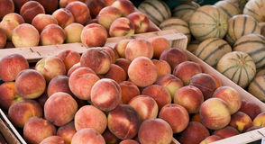 Peaches and melon Royalty Free Stock Photo