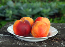 Peaches on old wooden table Stock Image