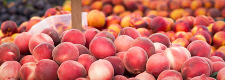 Peaches and other fruits. Bins of peaches, plums and nectarines at the Clement Street Farmers Market in San Francisco Stock Image