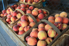 Peaches at the outdoor market in wooden baskets. Stock Image