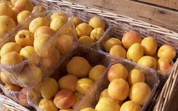 Peaches in a plastic boxes in a wicker box. Fresh wet shinny peaches in the sunshine at the market, ready to eat royalty free stock image