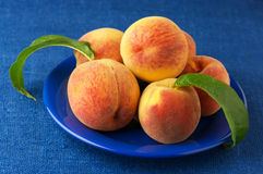 Peaches in plate Stock Images