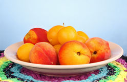Peaches and plums in a bowl. Some peaches and yellow plums in a bowl on a colored napkin Royalty Free Stock Photos