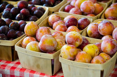Peaches and plums by the pint Royalty Free Stock Photo