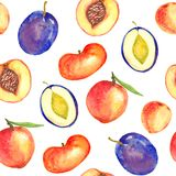 Peaches and plums variety with leaves and cut slices with pit. Peaches and plums fruits slices, seamless pattern design on white background, hand painted Stock Image