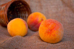 Peaches and punnet Stock Images