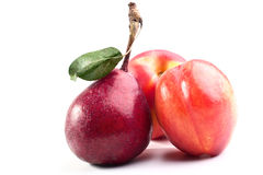 Peaches and purple pear Stock Images