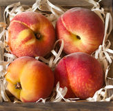 Peaches. Royalty Free Stock Photos