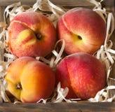 Peaches. Royalty Free Stock Photos