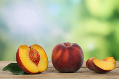 Peaches in summer with copyspace Stock Photos
