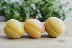 Peaches. Sweet, tasty and fresh peaches Royalty Free Stock Image