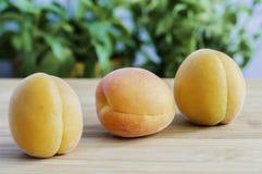 Peaches. Sweet, tasty and fresh peaches Royalty Free Stock Photo