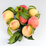 Peaches on Table Royalty Free Stock Images