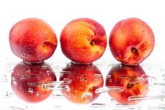 Peaches three whole in water drops on white background isolated close up royalty free stock photography