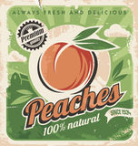 Peaches, vintage poster template Royalty Free Stock Photos