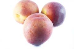Peaches on white background Stock Image