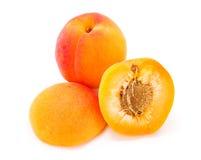 Apricots on white (Prunus armeniaca) Stock Photos