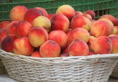 Peaches in a wicker basket. Some peaches in a wicker basket Stock Photos