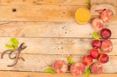 Peachs Royalty Free Stock Image