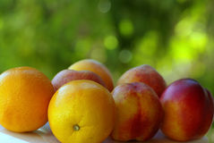 Peachs and orange. Macro shot of Peachs and orange fruits Royalty Free Stock Photos