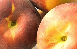 Peachy. Detail of three juicy peaches Stock Images