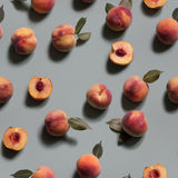 Peachy Background. Seamless Pattern. Royalty Free Stock Photography