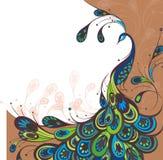 Peacock. Διανυσματικό υπόβαθρο διανυσματική απεικόνιση