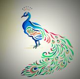 Peacock που γίνεται όμορφο από με στον τοίχο δωματίων απεικόνιση αποθεμάτων