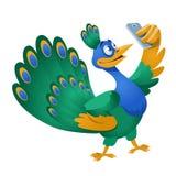 Peacock που κάνει selfie Στοκ Φωτογραφίες