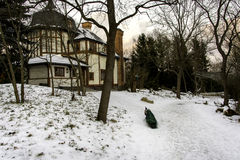 Peacock στο χιόνι, Στοκχόλμη στοκ εικόνες