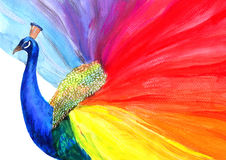 Peacock. Colorful painting of beautiful bird Stock Photo