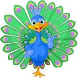 Κινούμενα σχέδια peacock Στοκ Εικόνες