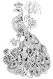 peacock Ilustração Stock
