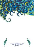Peacock background vector illustration